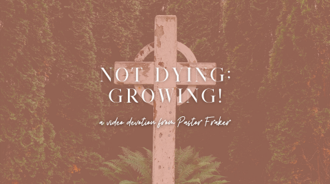 Video Devotion: Not Dying; Growing!