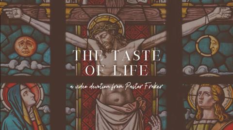 Video Devotion: The Taste of Life